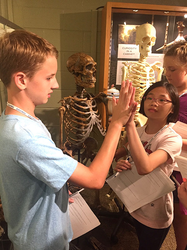 Finding Your Roots campers examine human and neanderthal skeletons.