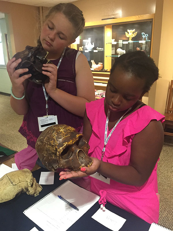 Finding Your Roots campers examine hominin skulls.